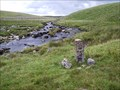 Image for WD 22, Western Redlake Foot, North West Dartmoor
