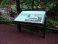 Image for Caldeira Velha Flora and Fauna Information Sign