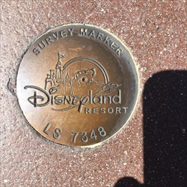 Disney BM at Mickey