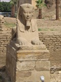 Image for Sphinx Avenue, Luxor Temple, Egypt