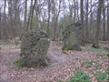 Image for Les Menhirs des Indrolles