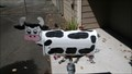 Image for Cow Mailbox - Molalla Oregon