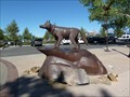 Image for Wolf - Albuquerque, New Mexico