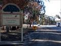 Image for Town of Trees - Narrandera, NSW, Australia