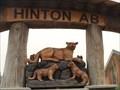 Image for Cougars - Hinton, Alberta