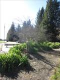 Image for Joseph Nozzolillo - Rohnert Park, CA