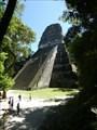 Image for Tikal Temple V Pyramid - Tikal, Peten, Guatemala