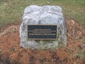 Image for Village of Wappingers Falls, NY Time Capsule