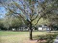 Image for Tony E. Spann - Palmetto, FL