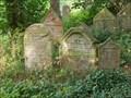 Image for židovský hrbitov / the Jewish cemetery, Blovice,  Czech republic