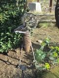 Image for Chain Horn Ram -  Springs Preserve - Las Vegas, NV