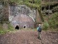 Image for Welling Tunnel, Cameron, West Virginia