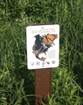Image for National Tallgrass Prairie Monarch Butterfly Garden - Wilmington, IL