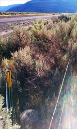 View of AZ and witness post looking west towards triangulation station (destroyed) .2 miles west from here.
