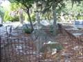 Image for Cedar Key Cemetery - Cedar Key, FL