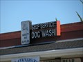 Image for Shampoo-Chez Self-Services Dog Wash  - Santa Cruz, CA