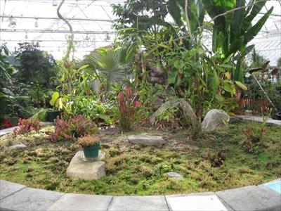 Roger Williams Park Botanical Center Providence Ri Carnivorous Plant Localities On