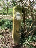 Image for Netherlands/Germany, Borderstone 552, Grensweg, Siebengewald, Netherlands