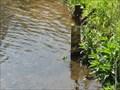 Image for River Wye Gauge - Cressbrook, UK