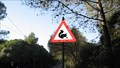 Image for Squirrels ahead, Lisbon, Portugal
