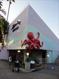 Image for Red Octopus  -  San Diego, CA