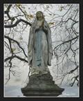 Image for Mary the Blessed Virgin  - Dolní Kalná, Czech Republic