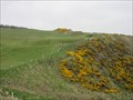 Image for Stonehaven Golf Club - Aberdeenshire, Scotland.