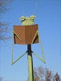Image for Book-reading Praying Mantis - Jackson, TN