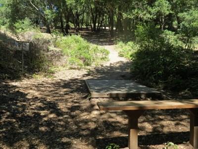 Hole 2 Fairway, Aptos, CA
