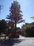 Image for Cell Phone Tree - Palo Alto, CA