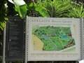 Image for Garden has white bougainvillea - Adelaide Botanical Garden - Adelaide - SA - Australia