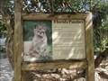Image for Florida Panther  -  Davie, FL