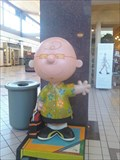 Image for Beach Charlie Brown - Coddington Mall - Santa Rosa, CA