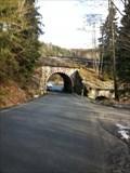 Image for Eisenbahnbogenbrücke über den Lichtenbrunner Grund - Bad Lobenstein/ Deutschland/TH