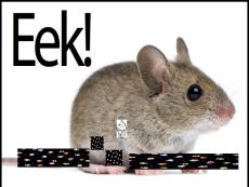 mouse tjms