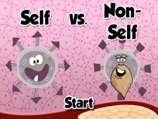 Self vs. Non-Self