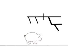 Pig Sentence