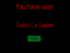 Realistic car simulator