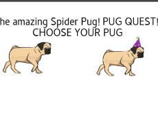 Pug Quest