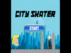 city skater (my first game)