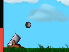 Cannon Physics