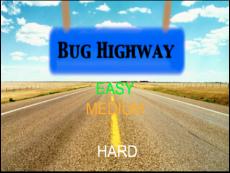 bug highway