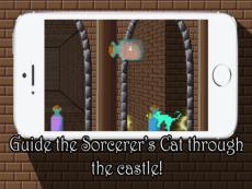 Sorcerer's Cat