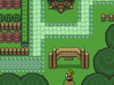 Zelda holden