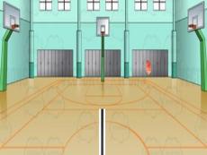 Basketball Volleyball