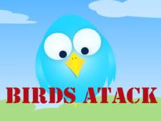 Bird's Attack