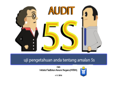 Audit 5s