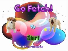 RSF Go Fetch