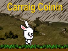 Carraig Coinín