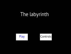 The_labyrinth